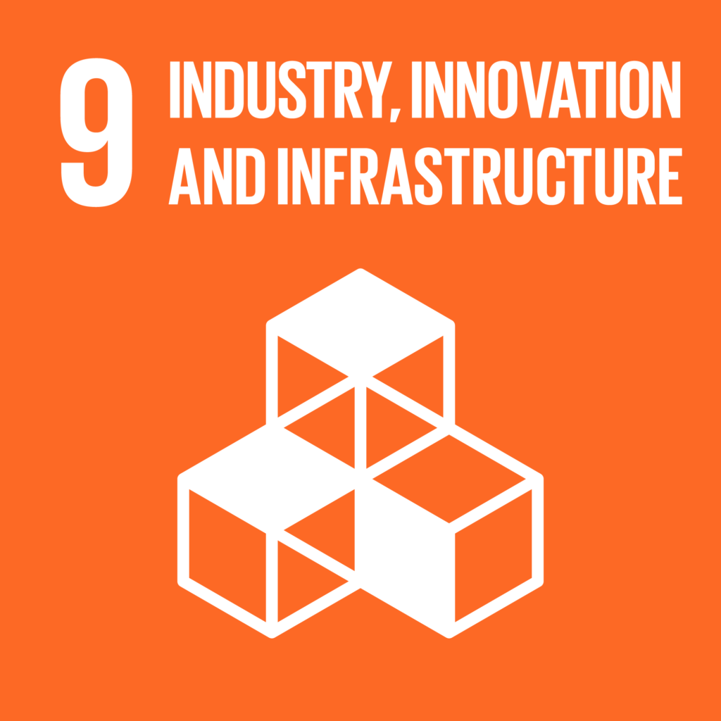 TheGlobalGoals_Icons_Color_Goal_9-1024x1024